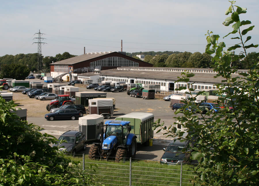 Auktion Halle Gartlage